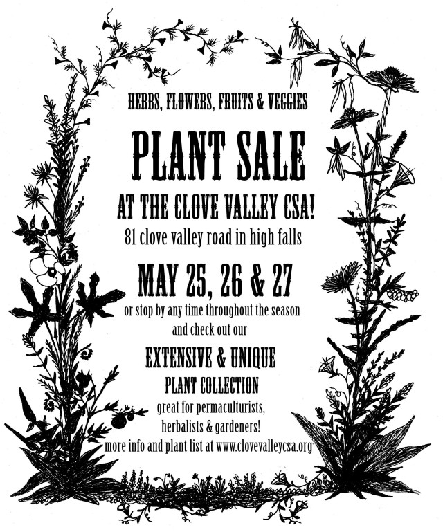 plantsaleflyer2013